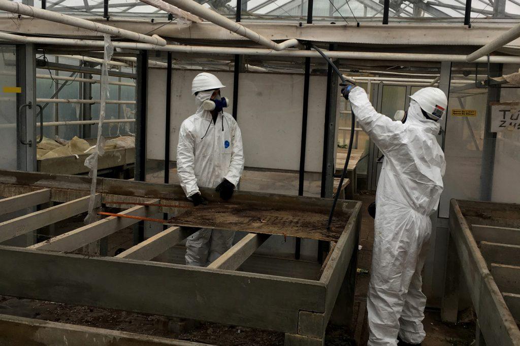 , Asbest – Sanierung & Entsorgung